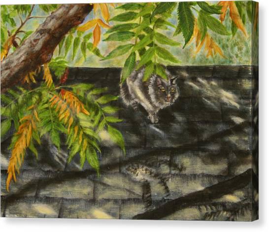 Kirby Stalking Canvas Print by Karen Peterson