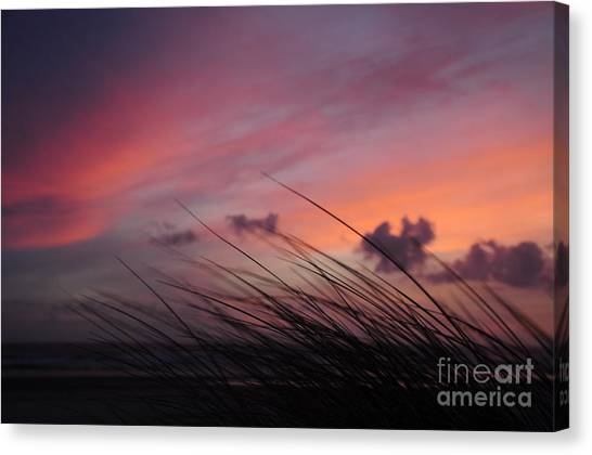 Kiss Of Night Canvas Print