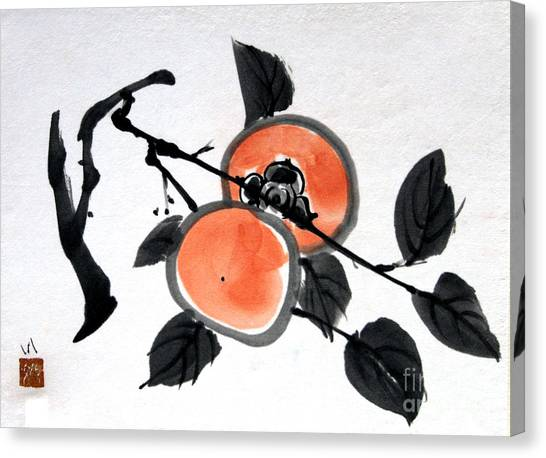 Kissing Persimmons Canvas Print