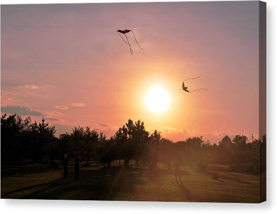 Kites Flying In Park Canvas Print