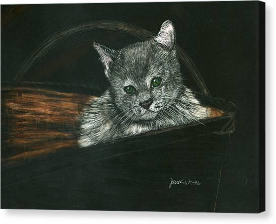 Kitten In A Basket Canvas Print by Jessica Kale