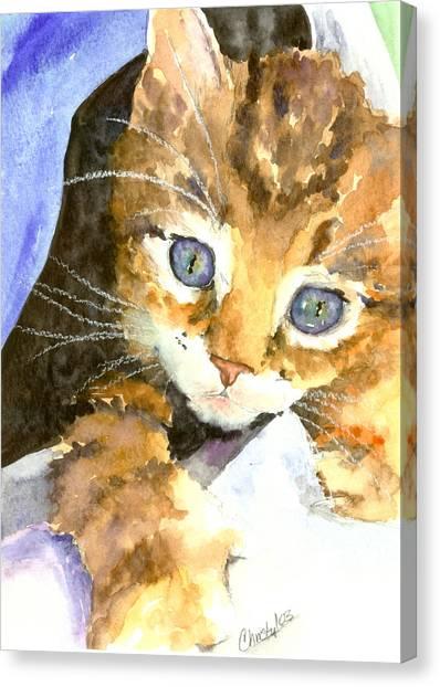 Kitten In Blue Canvas Print