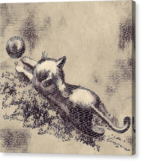 Kitten Playing With Ball Canvas Print