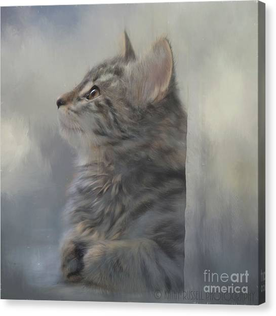 Kitten Zada Canvas Print