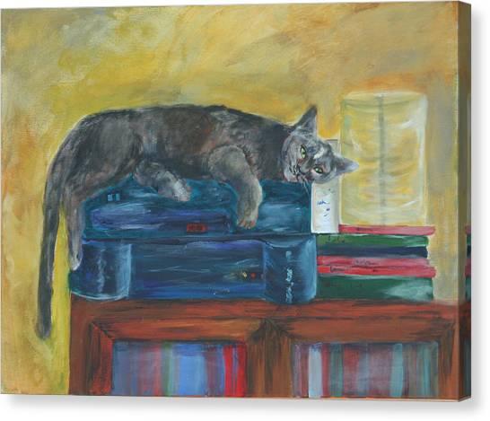 Kitty Comfort Canvas Print
