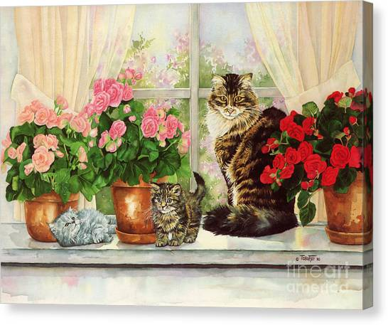 Main Coons Canvas Print - Kitty Kitty Cat by Wendy Tosoff