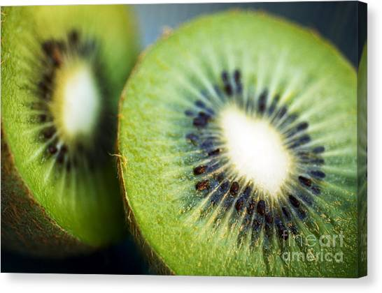 Kiwis Canvas Print - Kiwi Fruit Halves by Ray Laskowitz - Printscapes