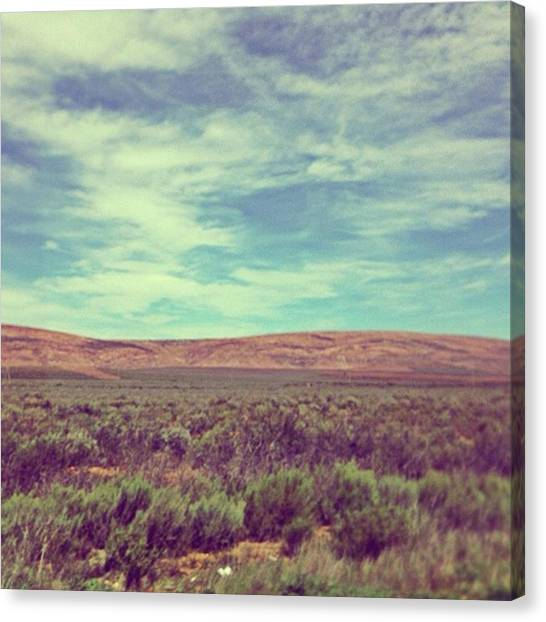 Big Sky Canvas Print - Klein Karoo In Spring by Jacci Freimond Rudling