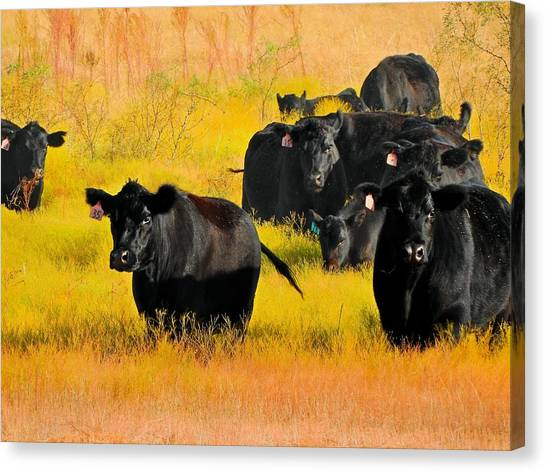 Knee High In Color Canvas Print