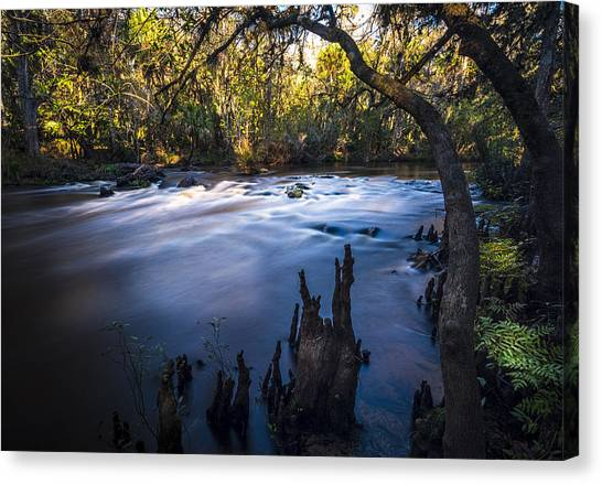 Bass Fishing Canvas Print - Knees In The Rapids by Marvin Spates