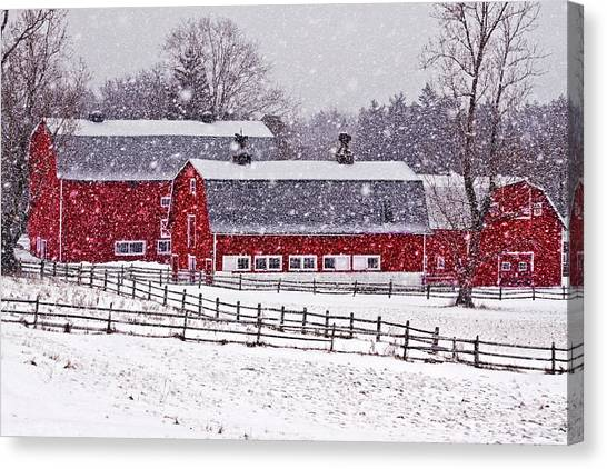 Horse Farms Canvas Print - Knox Farm Snowfall by Don Nieman