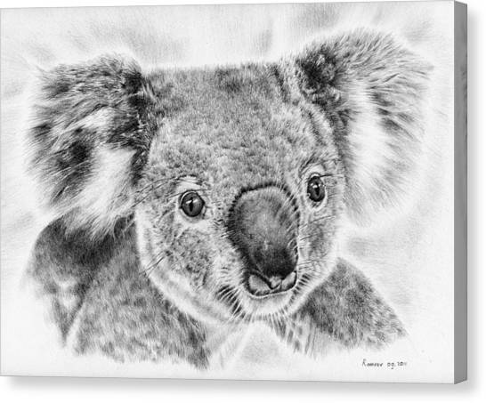Koala Canvas Print - Koala Newport Bridge Gloria by Remrov