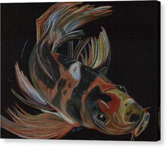 Koi Pond Canvas Print - Koi by Kelly Jay