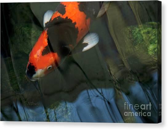 Koi Reflection Canvas Print