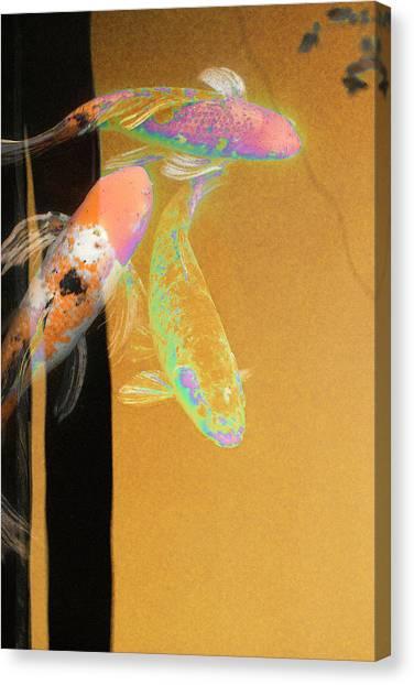 Canvas Print - Koi Vi Yellow by Ron Morecraft