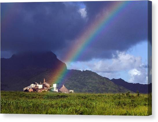 Koloa Mill Canvas Print by Nick Galante