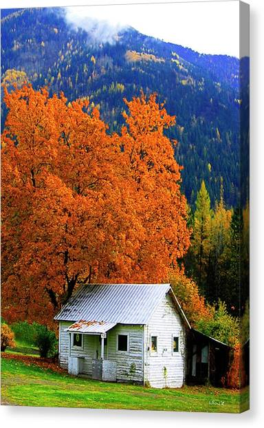 Kootenay Autumn Shed Canvas Print