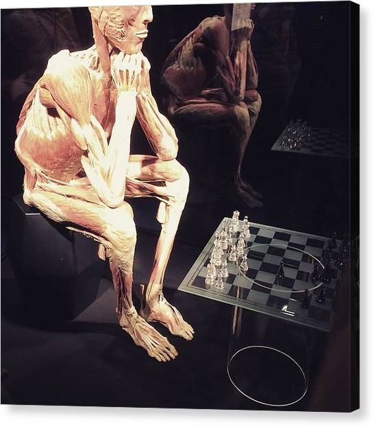 Science Canvas Print - Body Worlds - Chess Player by Nikolai Fischer