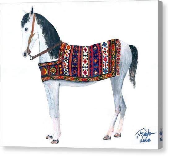 Kurdistan Pony Canvas Print