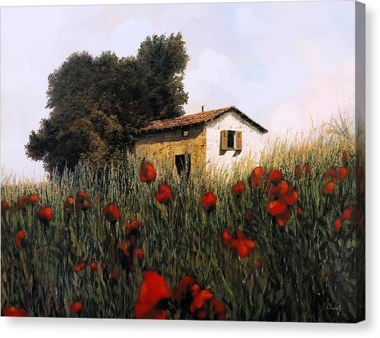 Poppy Fields Canvas Print - La Casetta In Mezzo Ai Papaveri by Guido Borelli