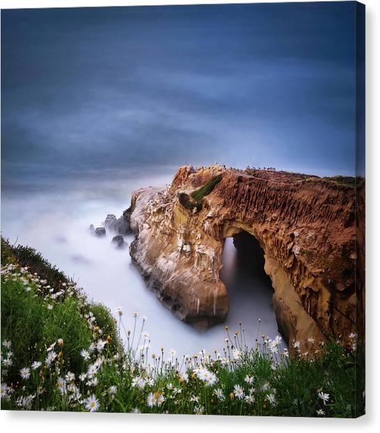 Singh Canvas Print - La Jolla Cove by Larry Marshall