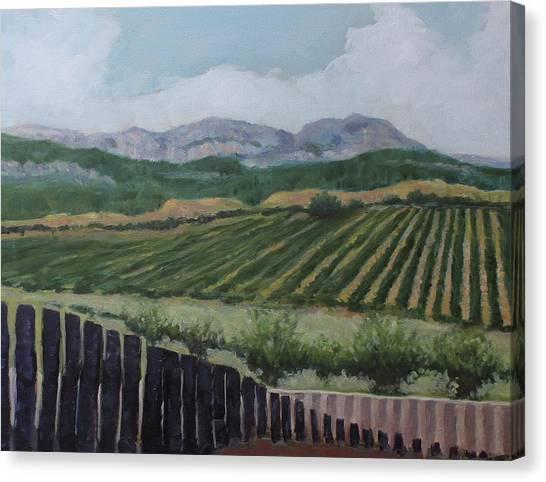 La Rioja Valley Canvas Print