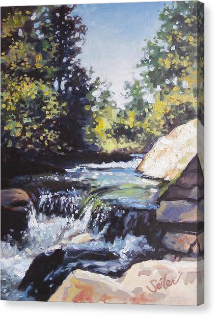 La Salle Falls Canvas Print by Larry Seiler