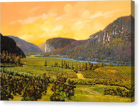 Country Canvas Print - La Vigna Sul Fiume by Guido Borelli