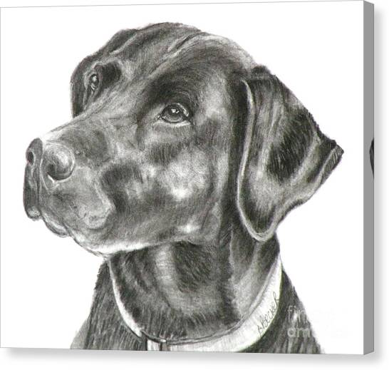 Lab Charcoal Drawing Canvas Print
