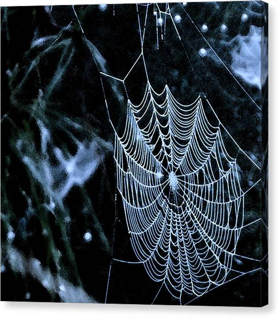 Lacework Canvas Print by Lyle  Huisken