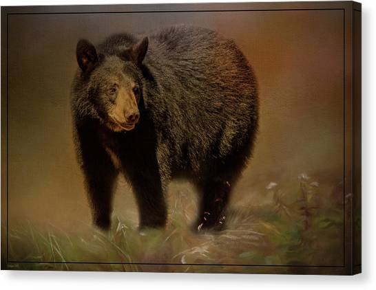 Black Bear In The Fall Canvas Print