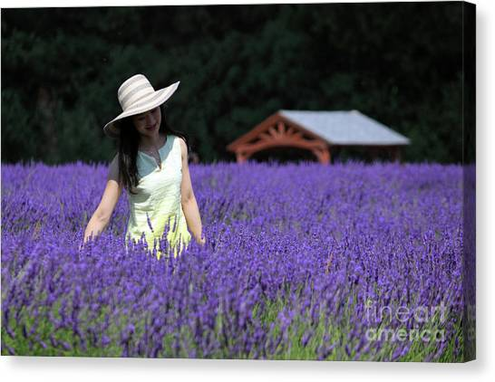 Lady In Lavender Canvas Print