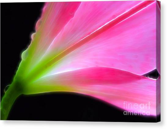 Abstract Lily Canvas Print - Lady Lily by Krissy Katsimbras