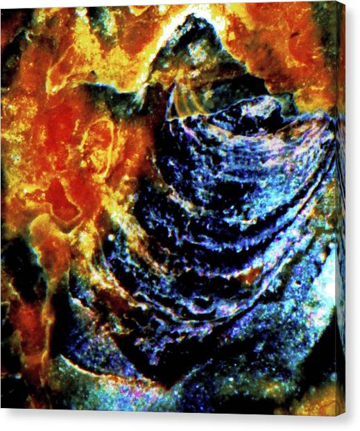 Lady Of The Shell Canvas Print