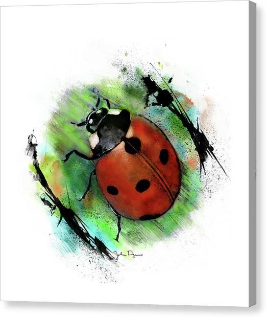 Ladybug Drawing Canvas Print