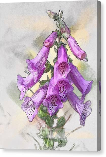 Lady's Glove Canvas Print