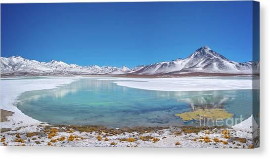 Andes Mountains Canvas Print - Laguna Blanca In Bolivia by Delphimages Photo Creations