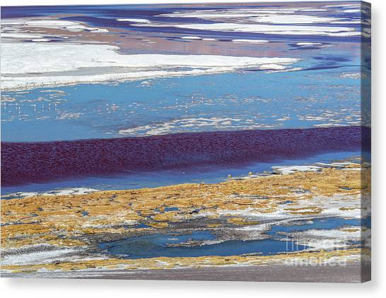 Andes Mountains Canvas Print - Laguna Colorada, Bolivia, Nature Abstract by Delphimages Photo Creations