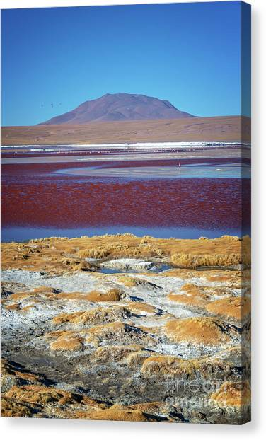Andes Mountains Canvas Print - Laguna Colorada, Bolivia, Vertical by Delphimages Photo Creations