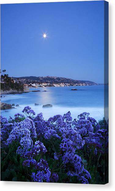Laguna Moonrise Canvas Print