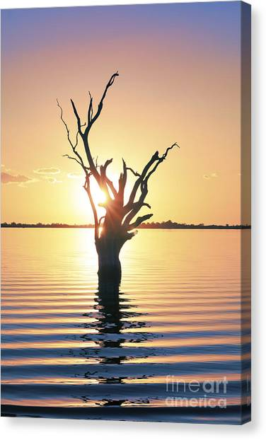 Canvas Print featuring the photograph Lake Bonney Sunset by Ray Warren
