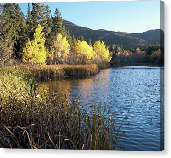 Canvas Print featuring the photograph Autumn At Cox Lake by Dutch Bieber