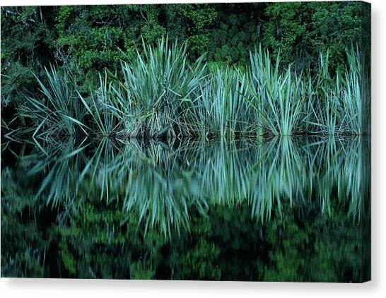 Fox Glacier Canvas Print - Lake Matheson Reflection by Christian Heeb