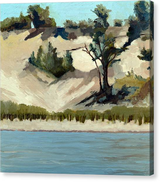 Lake Michigan Dune With Trees And Beach Grass Canvas Print