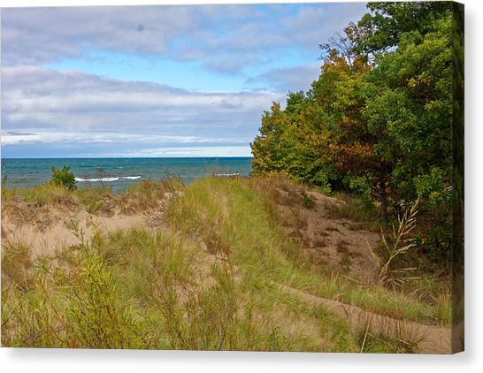 Lake Michigan Shore Canvas Print