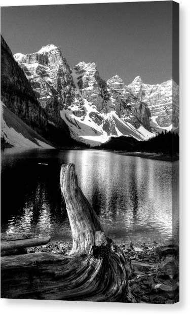 Lake Moraine Drift Wood Canvas Print