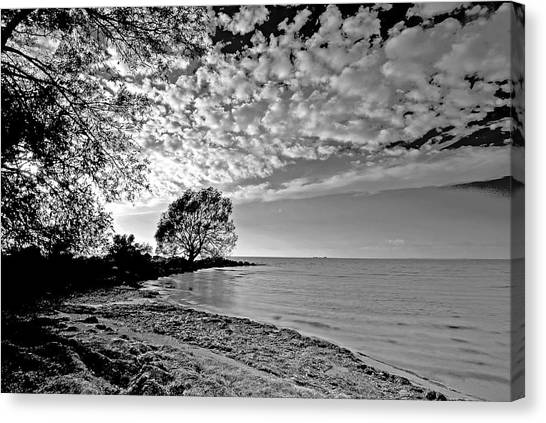 Lake Ontario. New York  Canvas Print