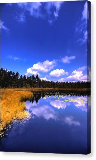 Lake Skaistes Canvas Print by Deividas Kavoliunas