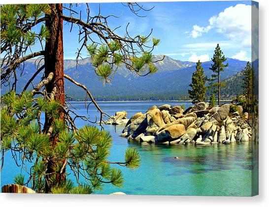 Lake Tahoe Colors Canvas Print