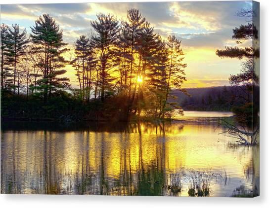 Lake Tiorati Golden Sunrise Canvas Print